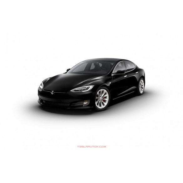 Model S Performance Solid Black