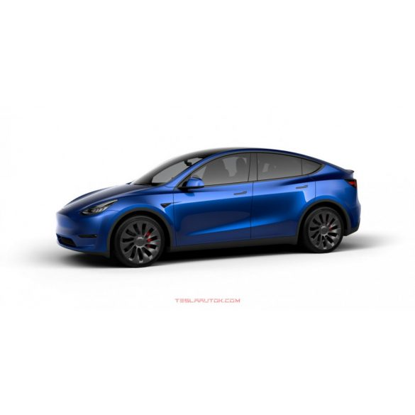 Model Y Performance AWD Deep Blue Metallic